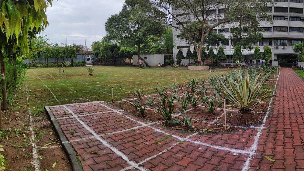 In the morning, before the marking of pathways began, there was only a square grid
